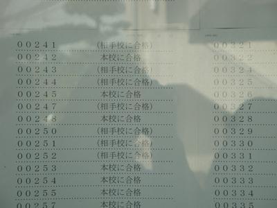 DSC08077_R.JPG
